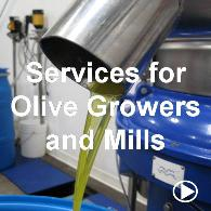Services for Olive Growers and Mills